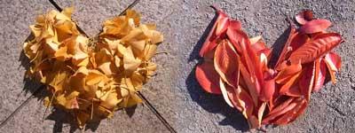 落ち葉のハート.jpg