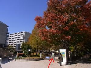 駅からの道のり13.JPG