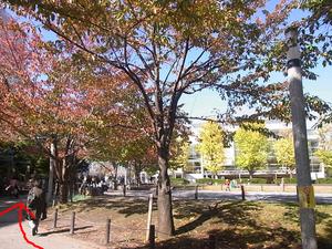 駅からの道のり16.JPG