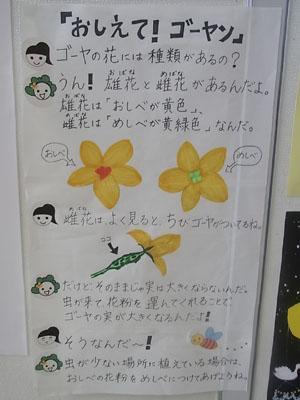 syukaku-4.jpg